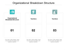 Organizational Breakdown Structure Ppt Powerpoint Presentation Design Templates Cpb