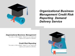 Organizational Business Management Credit Risk Reporting Demand Delivery Service Cpb