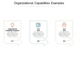 Organizational Capabilities Examples Ppt Powerpoint Presentation Ideas Cpb