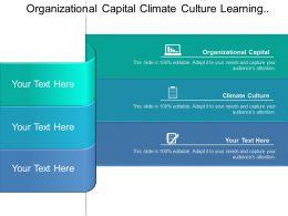 Organizational Capital Climate Culture Learning Prospective Shareholder Value