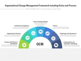 Organizational Change Management Framework Including Vision And Process