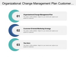 Organizational Change Management Plan Customer Oriented Marketing Strategy Cpb