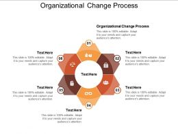 Organizational Change Process Ppt Powerpoint Presentation Visuals Cpb