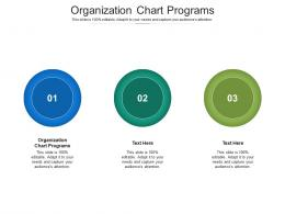 Organizational Chart Diagram Ppt Powerpoint Presentation Icon Infographics Cpb