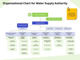 Organizational Chart For Water Supply Authority Deputy Ppt Powerpoint Presentation Pictures Format