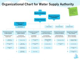 Organizational Chart For Water Supply Authority Service Subsidiary Ppt Powerpoint Presentation Introduction