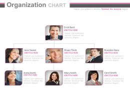 Organizational Chart Of Business Peoples Powerpoint Slides