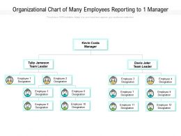 Organizational Chart Of Many Employees Reporting To 1 Manager