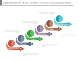 Organizational Chart Of Small Company Powerpoint Slide Background Image