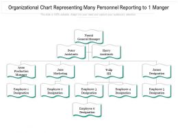 Organizational Chart Representing Many Personnel Reporting To 1 Manger