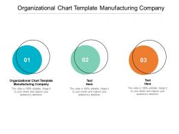 Organizational Chart Template Manufacturing Company Ppt Powerpoint Presentation Show Cpb