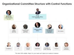Organizational Committee Structure With Control Functions