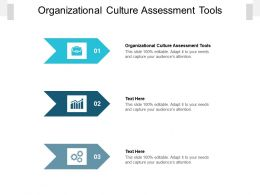 Organizational Culture Assessment Tools Ppt Powerpoint Presentation Infographics Master Slide Cpb