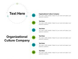 Organizational Culture Company Ppt Powerpoint Presentation Portfolio Infographic Template Cpb