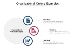 Organizational Culture Examples Ppt Powerpoint Presentation Layouts Designs Cpb