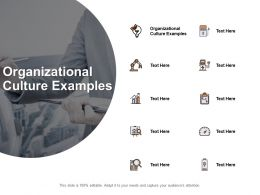Organizational Culture Examples Ppt Powerpoint Presentation Portfolio Visuals Cpb