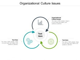 Organizational Culture Issues Ppt Powerpoint Presentation Infographic Template Graphics Cpb