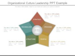 Organizational Culture Leadership Ppt Example