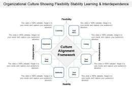 Organizational Culture Showing Flexibility Stability Learning And Interdependence