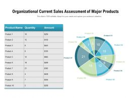 Organizational Current Sales Assessment Of Major Products