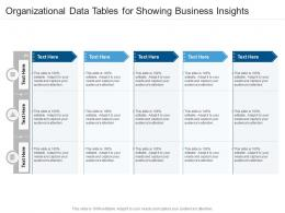Organizational Data Tables For Showing Business Insights Infographic Template