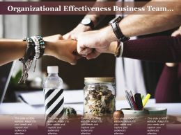 Organizational Effectiveness Business Team Actions Analysis