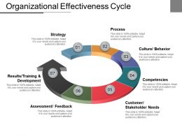 Organizational Effectiveness Cycle Good Ppt Example