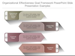 Organizational Effectiveness Goal Framework Powerpoint Slide Presentation Examples