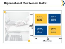 Organizational Effectiveness Matrix Ppt Summary Graphics Example