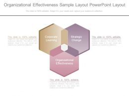 Organizational Effectiveness Sample Layout Powerpoint Layout