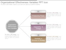 Organizational Effectiveness Variables Ppt Icon