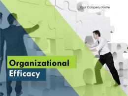 Organizational Efficacy Powerpoint Presentation Slides