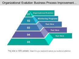 Organizational Evolution Business Process Improvement Monitoring Program Executive Coaching