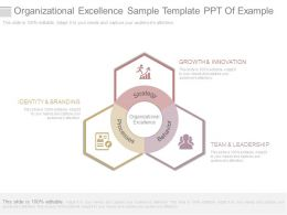 Organizational Excellence Sample Template Ppt Of Example