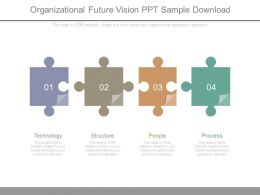 Organizational Future Vision Ppt Sample Download