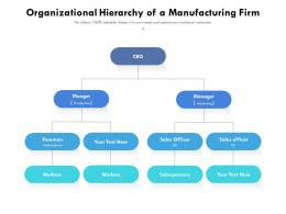 Organizational Hierarchy Of A Manufacturing Firm