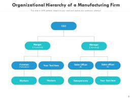 Organizational Hierarchy Structure Department Financial Manufacturing Marketing