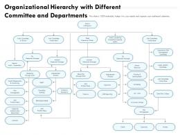 Organizational Hierarchy With Different Committee And Departments