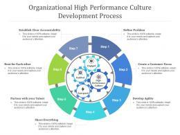 Organizational High Performance Culture Development Process