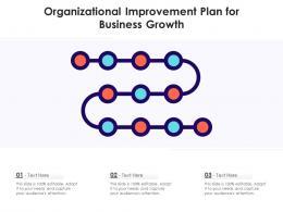 Organizational Improvement Plan For Business Growth