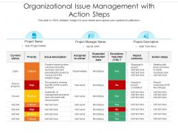 Organizational Issue Management With Action Steps
