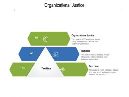 Organizational Justice Ppt Powerpoint Presentation Icon Inspiration Cpb