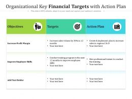 Organizational Key Financial Targets With Action Plan