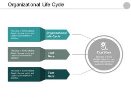 Organizational Life Cycle Ppt Powerpoint Presentation File Gallery Cpb