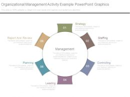 Organizational Management Activity Example Powerpoint Graphics