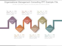 Organizational Management Consulting Ppt Example File