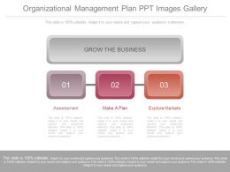 Organizational Management Plan Ppt Images Gallery