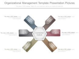 Organizational Management Template Presentation Pictures