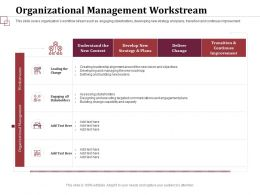 Organizational Management Workstream Assessing Stakeholders Ppt Infographic
