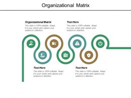 Organizational Matrix Ppt Powerpoint Presentation Layouts Styles Cpb